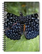 Regal Blue Butterfly Spiral Notebook