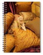 Regal Feline Spiral Notebook
