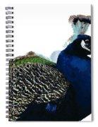 Regal Peacock Spiral Notebook