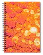 Regosol Spiral Notebook