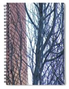 Regular Irregularity  Spiral Notebook