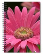 Rejoice It's Spring Spiral Notebook
