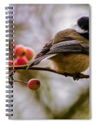 Relationships Are Like Birds Spiral Notebook
