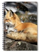 Relaxed Spiral Notebook