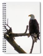 Relaxed Eagle Spiral Notebook