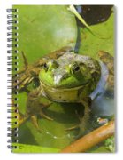 Relaxing On A Lily Pad  Spiral Notebook