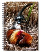 Relaxing Rooster Spiral Notebook