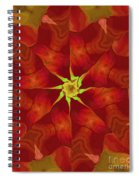 Release Of The Heart Spiral Notebook