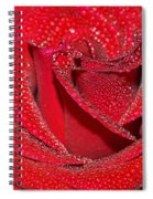 Relevance Of Love Spiral Notebook
