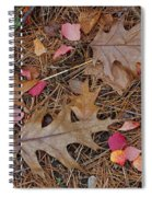Remainders Spiral Notebook