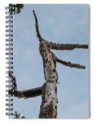 Remains Spiral Notebook