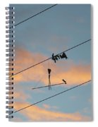 Remains Of Kite On The Electric Power Line Spiral Notebook