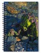 Remnant Spiral Notebook