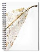 Remnant Leaf Spiral Notebook