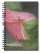 Rendition Of A Rose Spiral Notebook