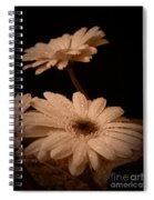 Renewal Sepia Spiral Notebook