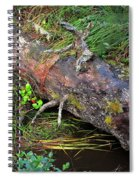 Replenishing The Earth I Spiral Notebook