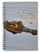 Reptile Reflection Spiral Notebook