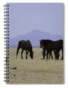 Reservation Horses 4 Spiral Notebook