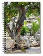 Resilient Tree Spiral Notebook