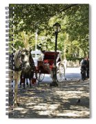 Rest Stop - Central Park Spiral Notebook