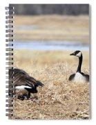 Restful Migration Spiral Notebook