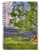 Resting Among The Bluebonnets Spiral Notebook