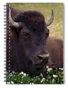 Resting Bison Spiral Notebook
