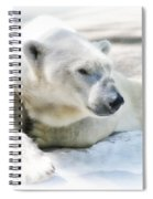 Resting Spiral Notebook