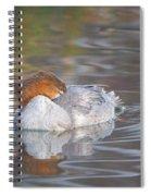 Resting Merganser Spiral Notebook