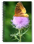 Resting On A Thistle Spiral Notebook
