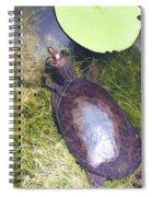 Resting On Weeds Spiral Notebook