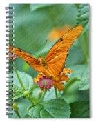 Resting Orange Butterfly Spiral Notebook