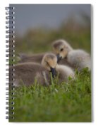 Resting Our Eyes Spiral Notebook
