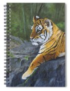 Resting Place - Tiger Cub Spiral Notebook