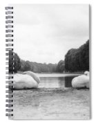 Resting Swans Spiral Notebook