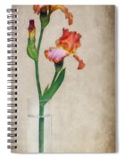 Restraint Spiral Notebook