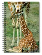 Reticulated Giraffe And Calf Spiral Notebook