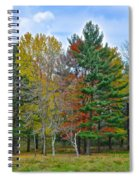 Retreating Pines Spiral Notebook