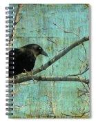 Retro Blue - Crow Spiral Notebook