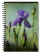 Retro Iris Metting Spiral Notebook