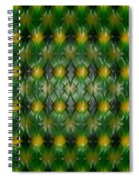 Pattern Plastic Spiral Notebook