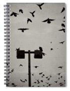 Revenge Of The Birds Spiral Notebook