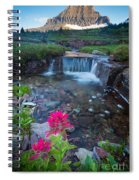 Reynolds Mountain Paintbrush Spiral Notebook