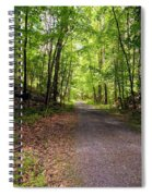 Wooded Path 12 Spiral Notebook