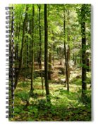 Wooded Path 13 Spiral Notebook