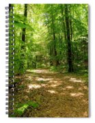 Wooded Path 16 Spiral Notebook