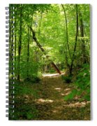 Wooded Path 17 Spiral Notebook