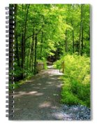Wooded Path 20 Spiral Notebook