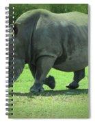 Rhino And Friend Spiral Notebook